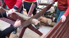 Two Men Is Sawing The Timber B...