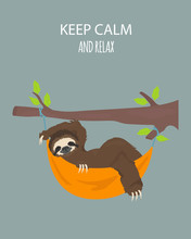The Story Of One Sloth. Traveling, Holiday. Funny Cartoon Sloths In Different Postures Set