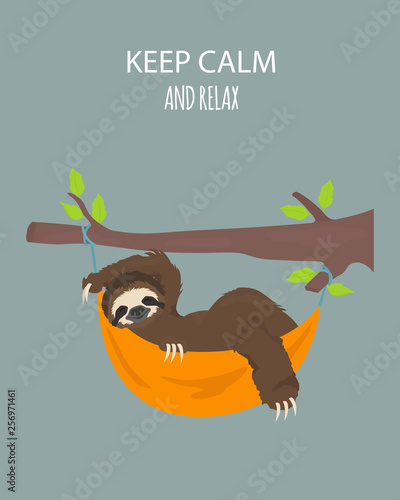 The story of one sloth Wallpaper Mural