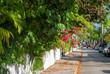 Straße mit tropischer Vegetation auf Key West, Florida