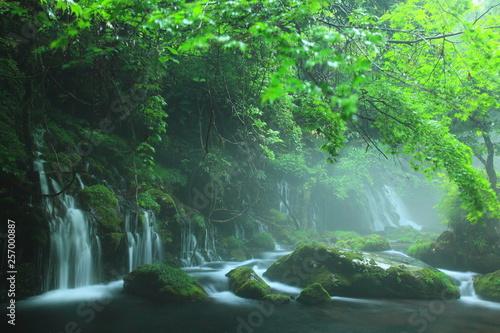 wodospady-w-deszczowym-lesie