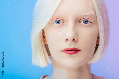 Fotografie, Obraz  awesome beautiful albino with makeup and blue eyes looking at the camera, close up photo