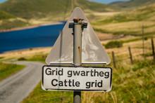 Sign: Cattle Grid (Welsh & Eng...