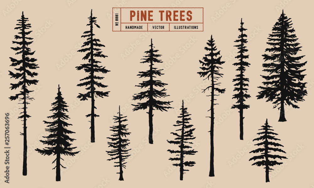 Fototapety, obrazy: Pine tree silhouette vector illustration hand drawn