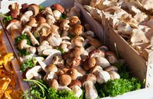 Selling Of Fresh Mushrooms
