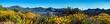 Leinwandbild Motiv Arizona Wildflowers 2019