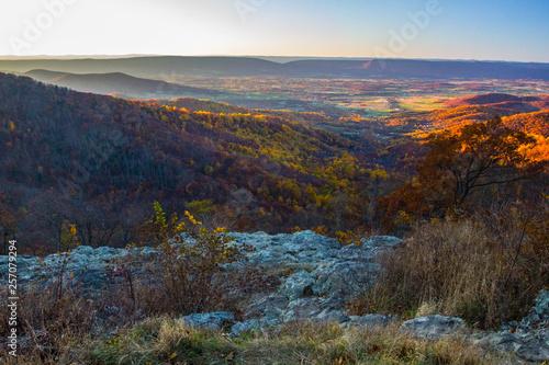 Photo Stands Lavender Shenandoah National Park in Autumn, Virginia