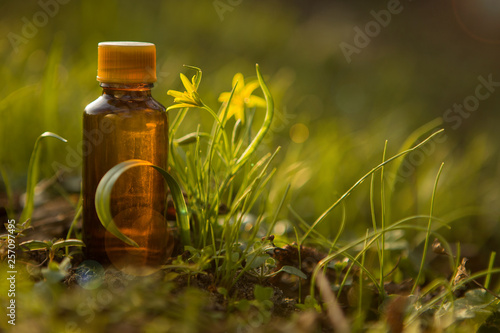 Photo Natural remedies, aromatherapy - bach therapy.