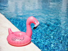 Inflatable Toy Of Pink Flamingo Near Swimming Pool At Poolside