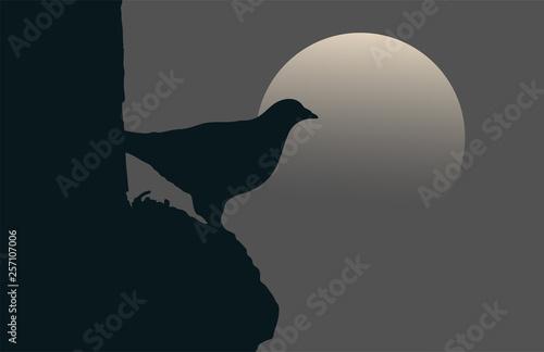 bird in the night illustration Canvas Print