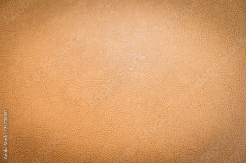 Fotografering  Abstract surface and texture of brown leather