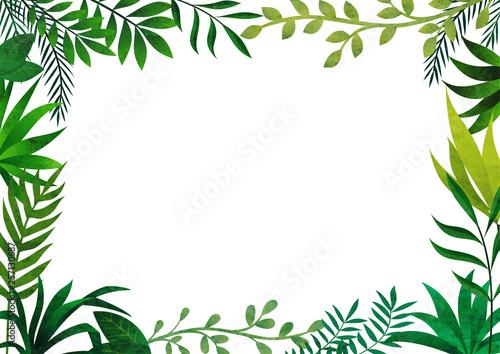 Papel de parede 葉っぱのフレーム