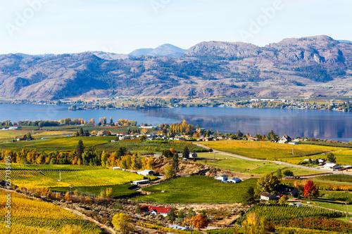 Foto auf Gartenposter Reisfelder Osoyoos Okanagan Valley British Columbia Canada
