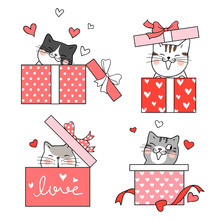Draw Cat In Gift Box Red Color For Valentine