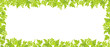 Hop plant frame rectangular banner. Border frame isolated transparent background. Green leaves and cones lupulus humulus. Vector flat Illustration for beer shop or cafe advertising.
