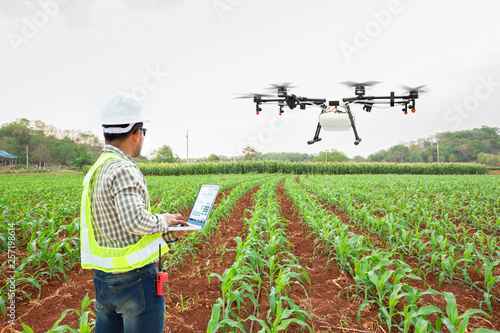 Photo  Technician farmer use wifi computer control agriculture drone fly to sprayed fertilizer on corn fields, Smart farm 4