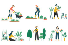 People Gardening. Woman Planti...