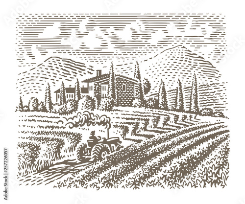 Leinwand Poster Engraving style illustration of an european vineyard (farm)