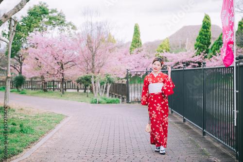In de dag Asia land Asian woman wearing kimono with cherry blossoms,sakura in Japan.