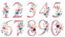 Number Set With Watercolor Flowers Roses And Leaf. Perfectly For Wedding Invitations, Greeting Card, Logo, Poster And Other Floral Design. Hand Painting. Isolated On White Background.