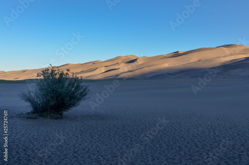 Αφίσα  sunrise at Great Sand Dunes National Park and Preserve (Saguache county, Colorad