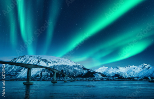 Poster Aurore polaire Bridge and aurora borealis over snowy mountains at night in Lofoten islands, Norway. Amazing northern lights and reflection in water. Winter landscape with starry sky, polar lights, road, sea. Space