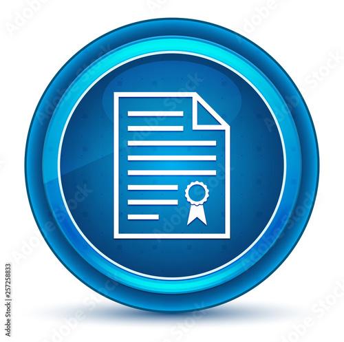 Photo Certificate paper icon eyeball blue round button