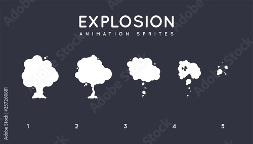 Explosion Storyboard Sprite Set for Animation. Vector Set. Canvas-taulu
