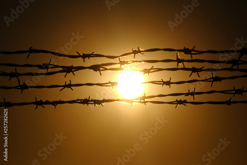 Canvastavla barbed wire