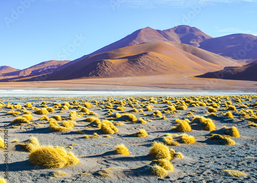Photo Stands Salmon Mountain peaks at Laguna Colorada in Bolivia