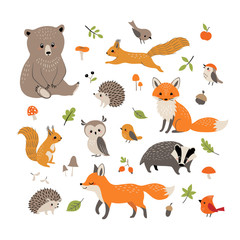 Naklejka Do pokoju dziecka Cute little woodland wild animals and birds