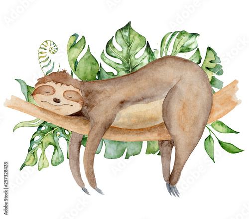 Photo Sloth bear watercolor illustration with tropical leaves sleeping on a branch