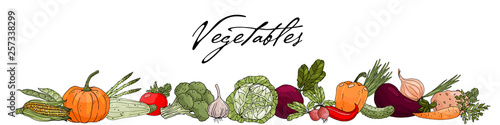 Border with hand drawn vegetables on a white background.