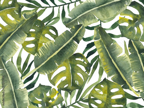Plissee mit Motiv - Watercolor illustration with green tropical leaves (von IMR)