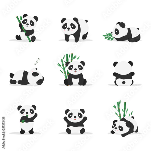 Photo  Cute pandas flat vector color illustrations set