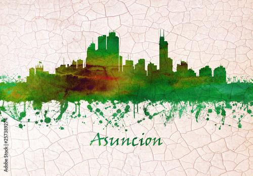 Asunción Paraguay skyline Wallpaper Mural