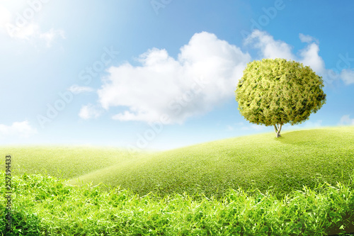 Foto auf Gartenposter Hugel Green grass field with tree