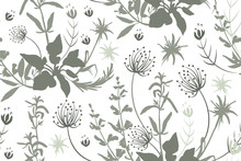 Grey Silhouettes Of Flowers And Herbs.