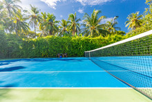 Amazing Sport And Recreational Background As Tennis Court On Tropical Landscape, Palm Trees And Blue Sky. Sports In Tropic Concept