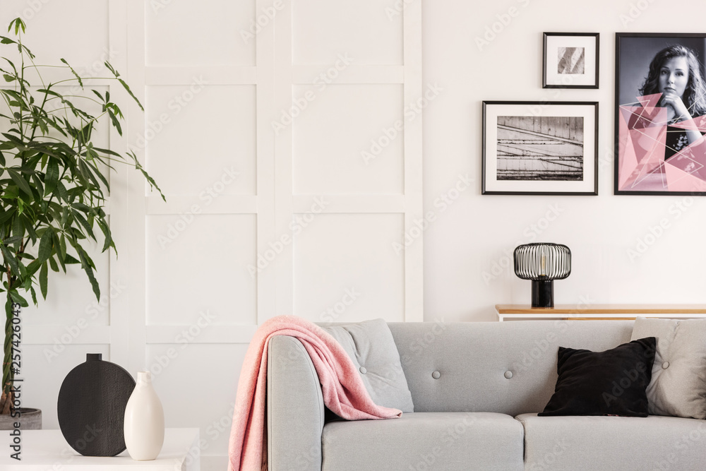 Fototapeta Gallery of posters on white wall of contemporary living room interior with grey scandinavian couch and green plant