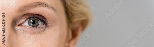 Stampa su Tela  panoramic shot of mature woman looking at camera isolated on grey