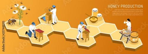 Honey Production Isometric Horizontal Illustration Canvas Print