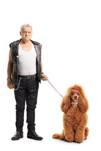 Mature Punker Standing With A Groomed Red Poodle Dog