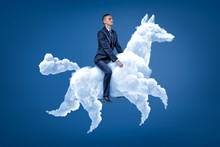 Young Businessman Riding White...