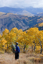 A Male Hiker Overlooks Vail Ski Resort And Fall Colors In Beaver Creek, Colorado.