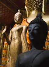 Buddha Statues Wat Xieng Thong  Luang Prabang. Laos.