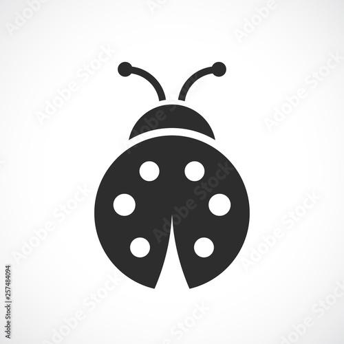 Photographie Ladybug vector icon