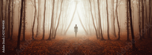 Photo mysterious forest panorama with strange figure on magical road