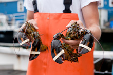 Teenage Lobsterman Apprentice ...
