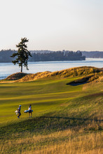 Golfers At Chambers Bay Golf C...